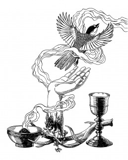 Sudenmarja Zine II Cover Illustration
